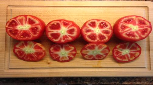 tomato_sueblog3
