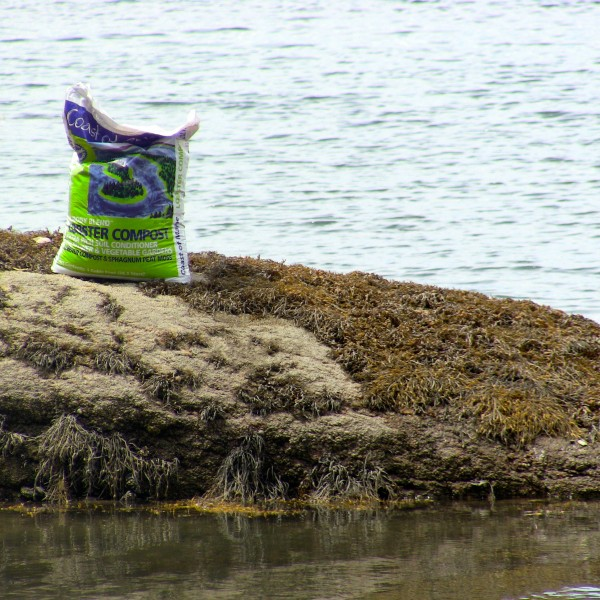 Lobster Compost on the Coast of Maine (literally!)