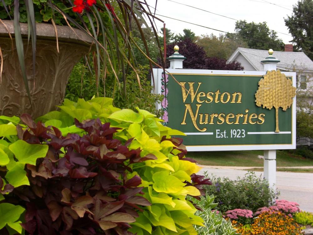 Weston Nurseries Coast Of Maine