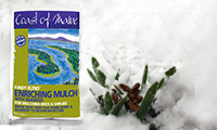Blog-featured-image-200×120-MAR-Weatherproof-plants