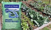 raised bed gardening blog