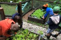 Brixham-Montessori-Friends-School-pics1