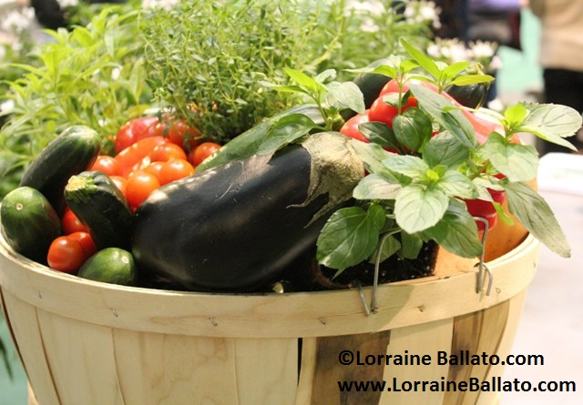 Ideas For Your 2020 Vegetable Garden Coast Of Maine Organic Products
