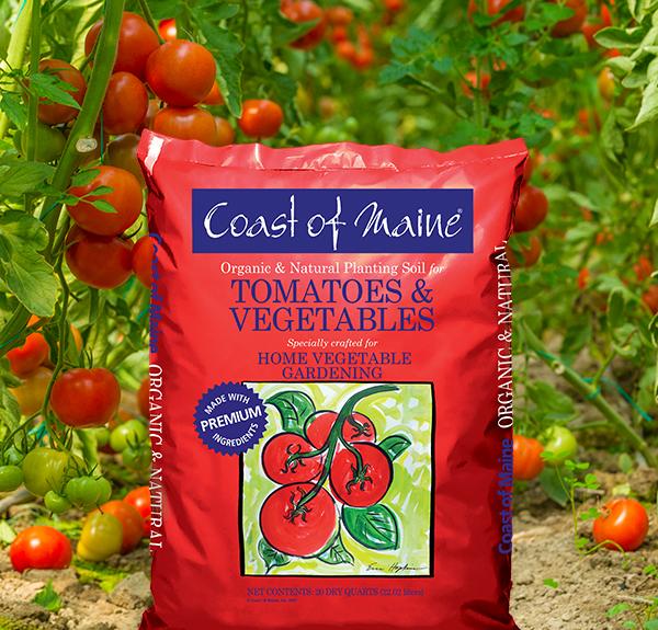 NEW- Tomato & Vegetable Planting Soil